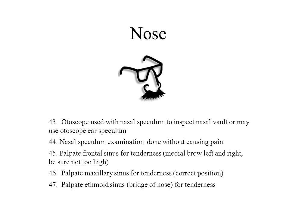 Nose 43.