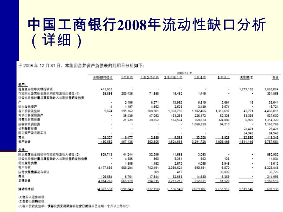 中国工商银行 2008 年流动性缺口分析 (详细)