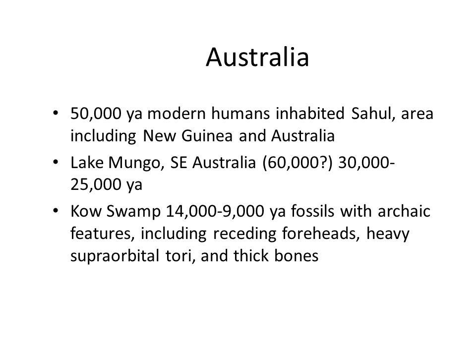 Australia 50,000 ya modern humans inhabited Sahul, area including New Guinea and Australia Lake Mungo, SE Australia (60,000?) 30,000- 25,000 ya Kow Swamp 14,000-9,000 ya fossils with archaic features, including receding foreheads, heavy supraorbital tori, and thick bones