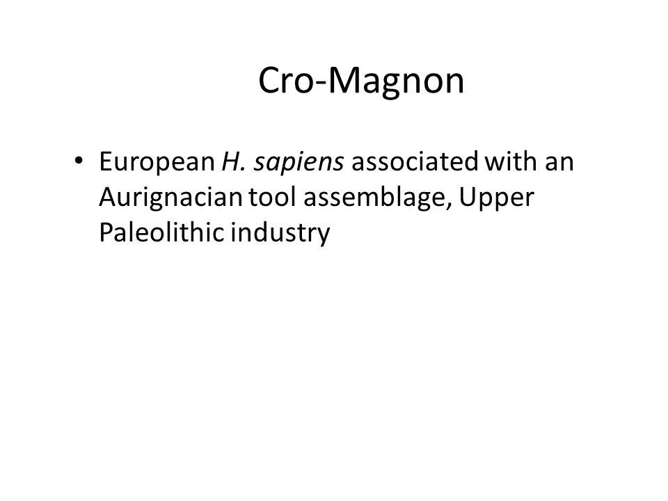 Cro-Magnon European H.