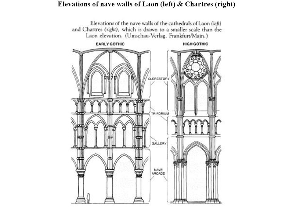 Elevations of nave walls of Laon (left) & Chartres (right)