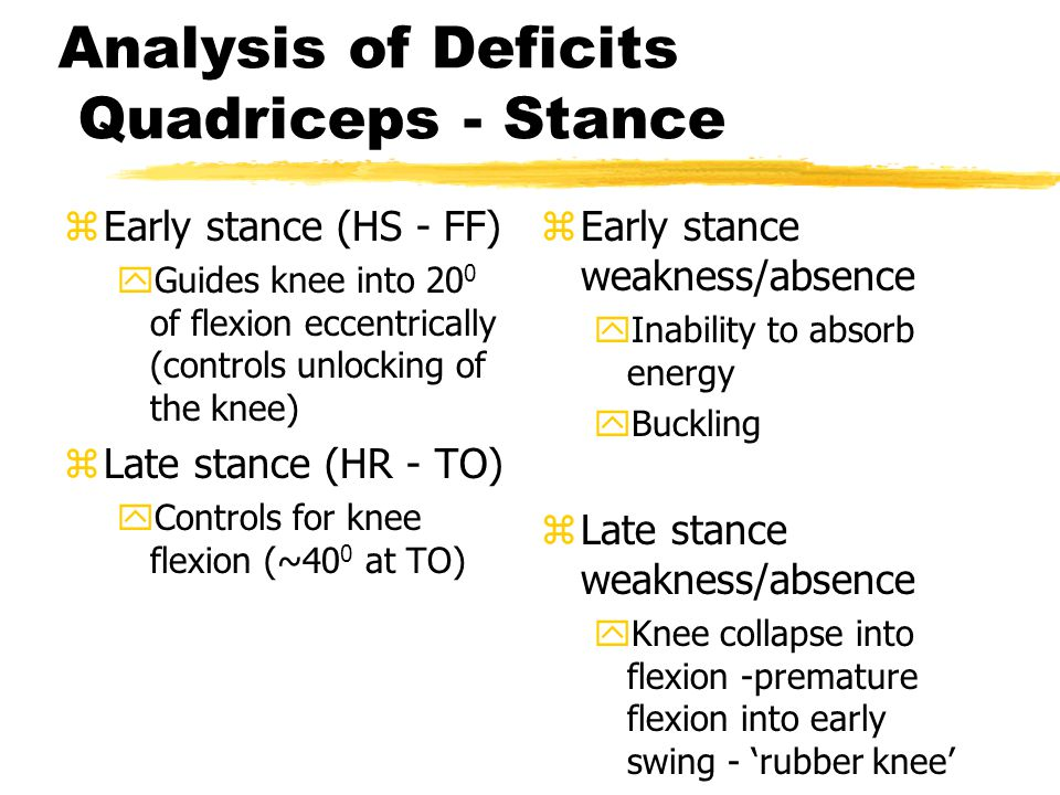 Analysis of Deficits Quadriceps - Stance zEarly stance (HS - FF) yGuides knee into 20 0 of flexion eccentrically (controls unlocking of the knee) zLat