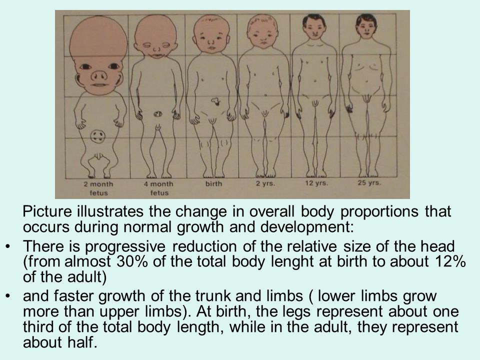 GROWTH ROTATION Most individuals show an anterior rotation pattern.