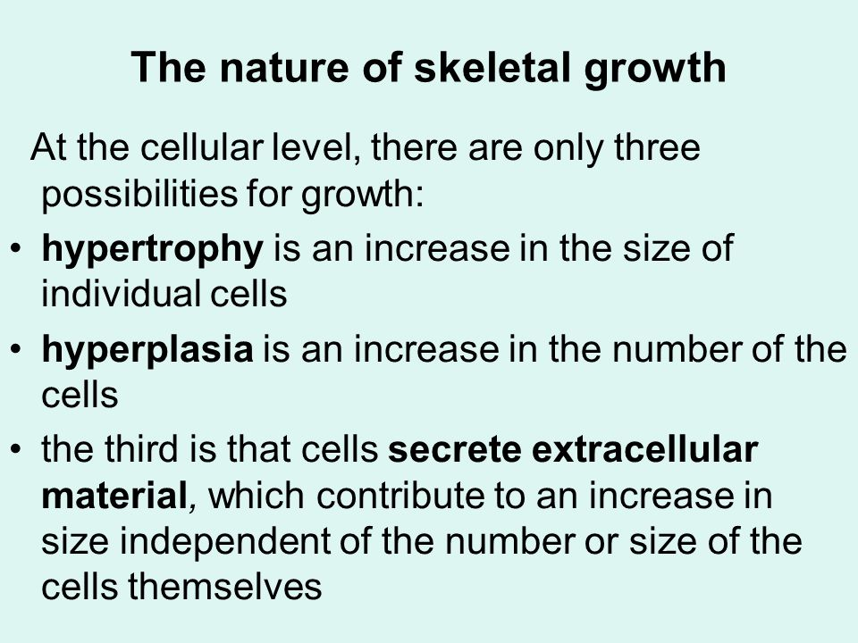 The nature of skeletal growth All three of these processes occur in skeletal growth.