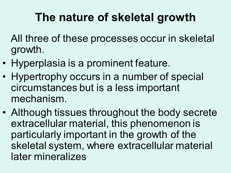 The nature of skeletal growth The fact that the extracellular material of the skeleton becomes mineralized leads to an important distinction between growth of the soft tissues of the body and the hard or calcified tissues.