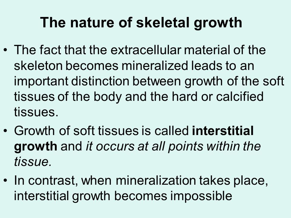 Cartilage as a determinant of craniofacial growth Transplantation experiments demonstrate that not all skeletal cartilage acts the same when transplanted.