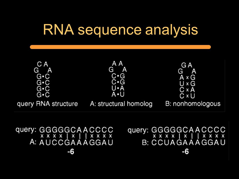 RNA sequence analysis