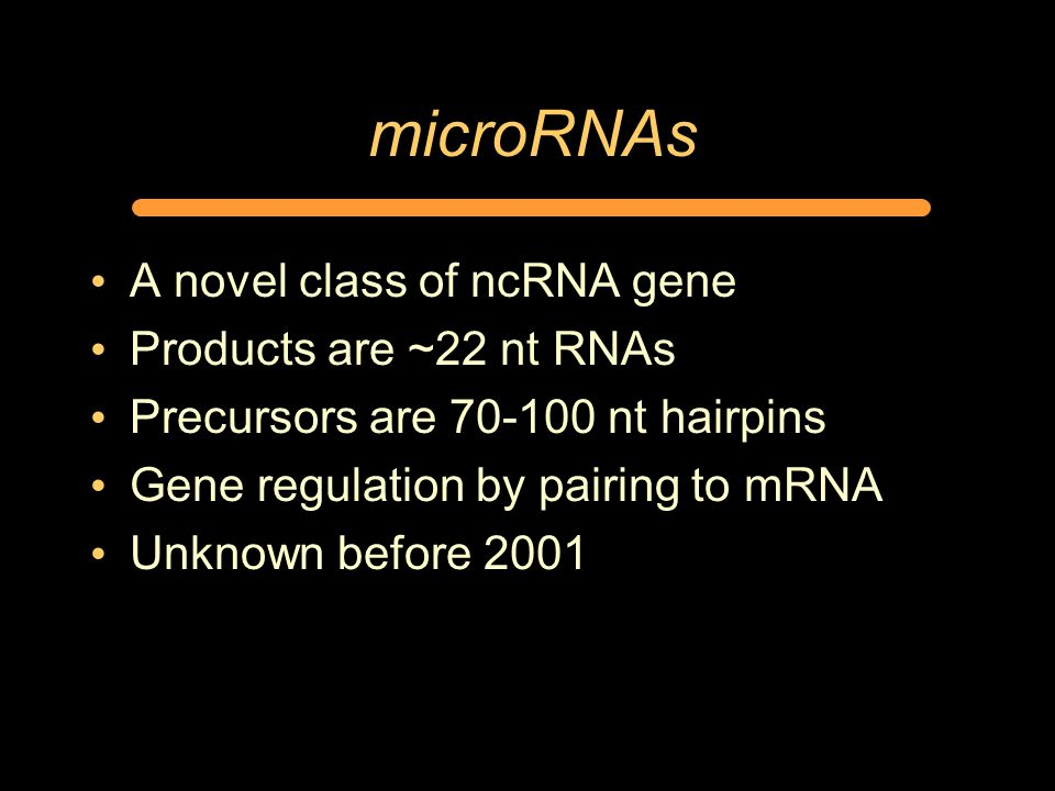 microRNAs A novel class of ncRNA gene Products are ~22 nt RNAs Precursors are 70-100 nt hairpins Gene regulation by pairing to mRNA Unknown before 2001