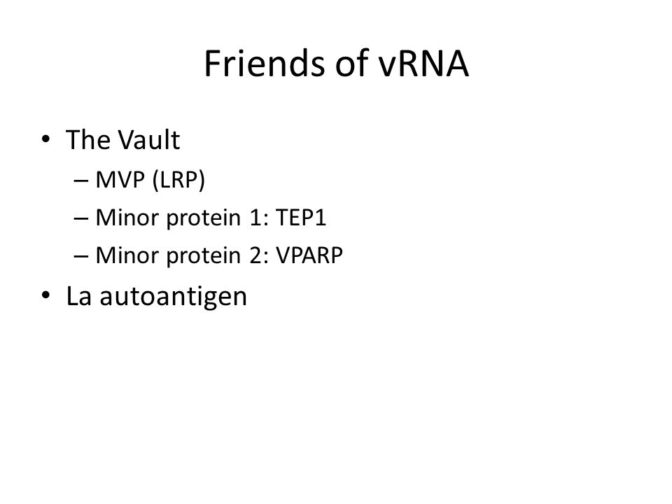 Friends of vRNA The Vault – MVP (LRP) – Minor protein 1: TEP1 – Minor protein 2: VPARP La autoantigen