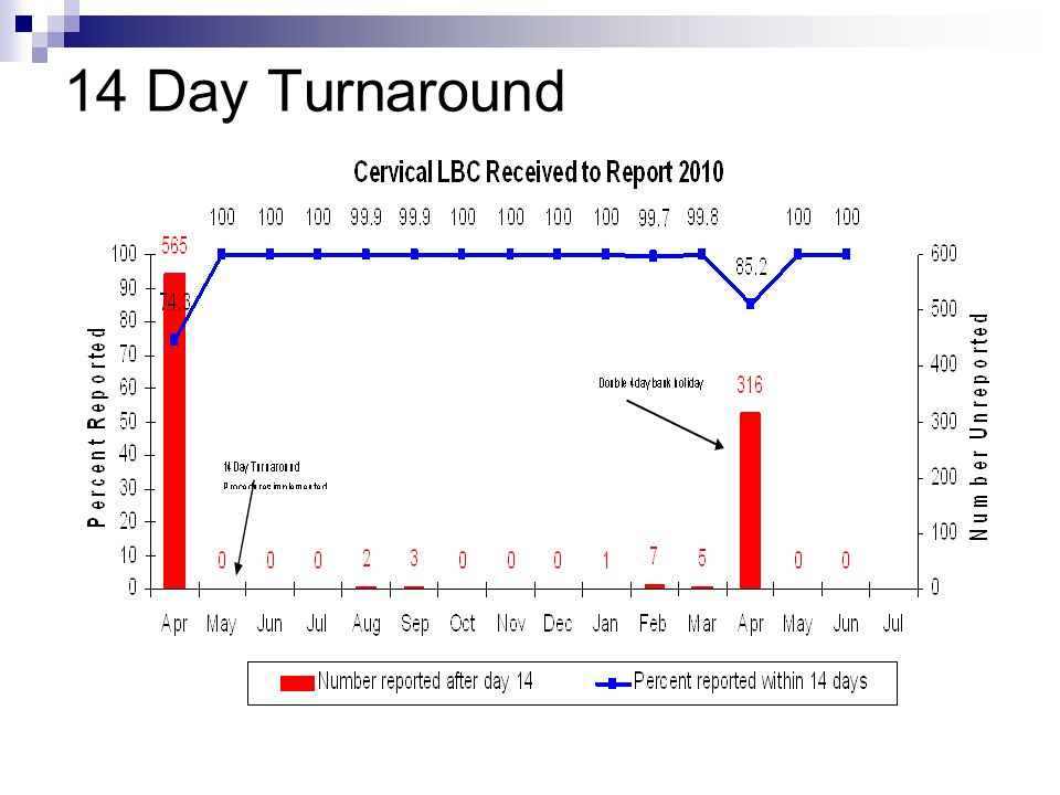 14 Day Turnaround
