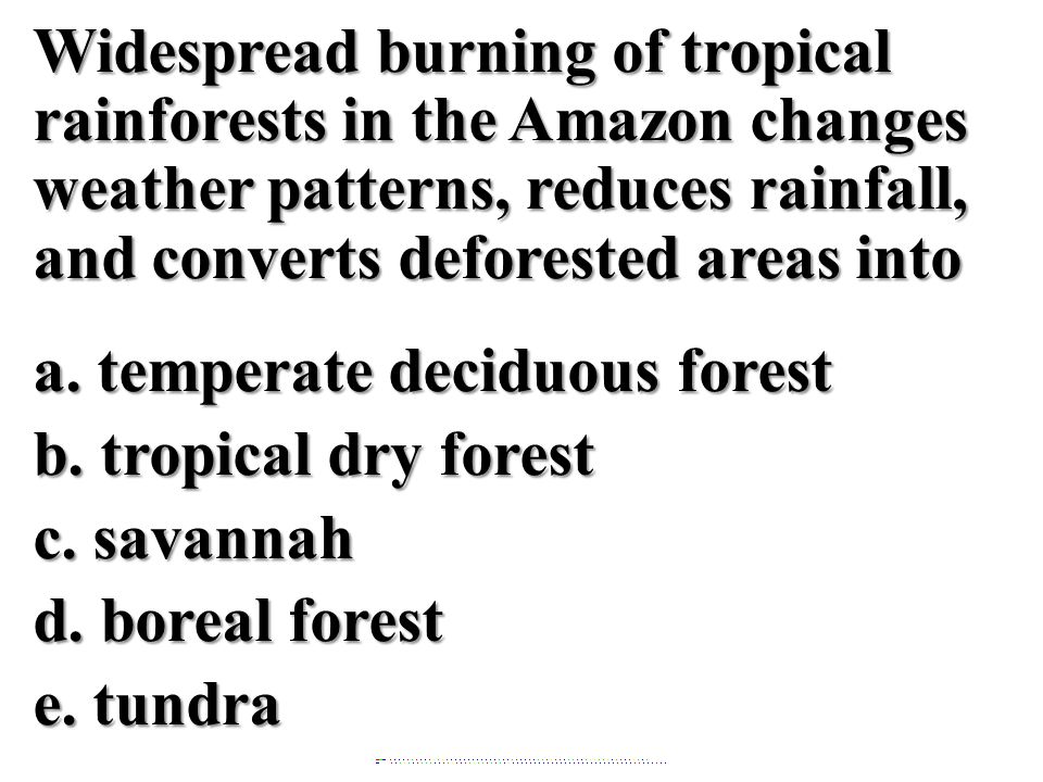 Widespread burning of tropical rainforests in the Amazon changes weather patterns, reduces rainfall, and converts deforested areas into a. temperate d
