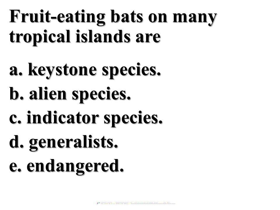Fruit-eating bats on many tropical islands are a. keystone species. b. alien species. c. indicator species. d. generalists.e. endangered.