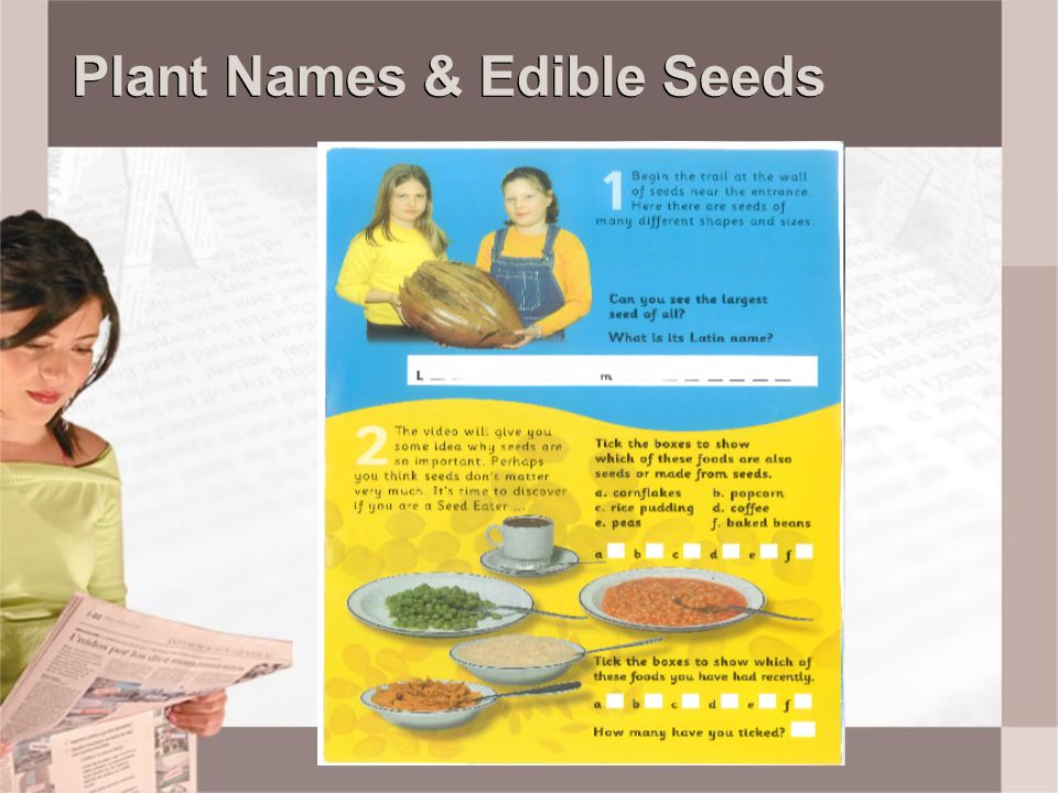 Plant Names & Edible Seeds
