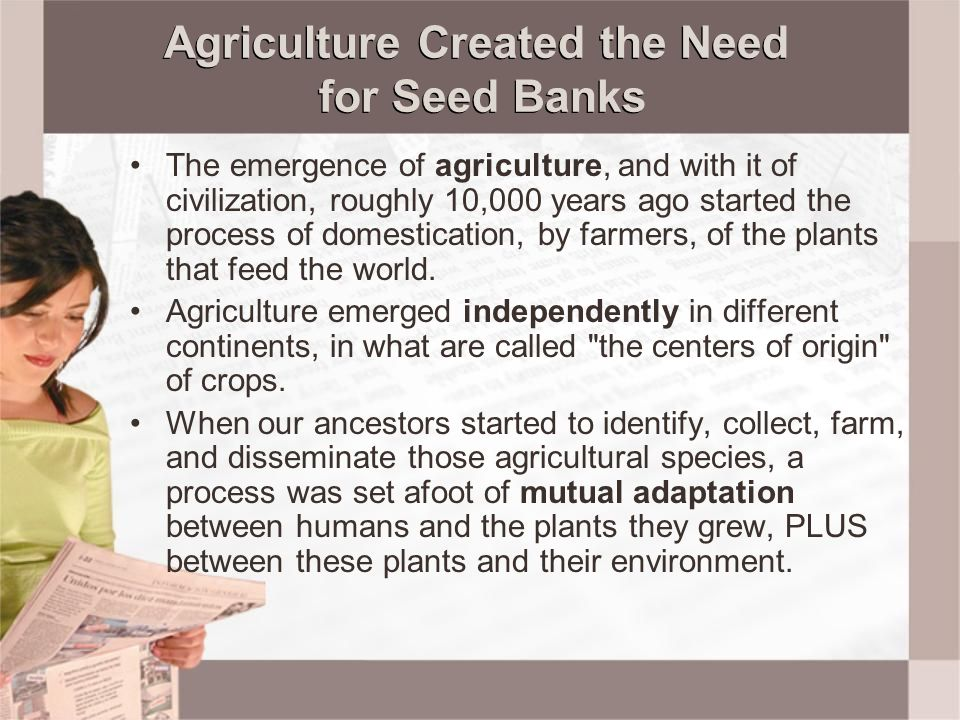 Agriculture Created the Need for Seed Banks The emergence of agriculture, and with it of civilization, roughly 10,000 years ago started the process of
