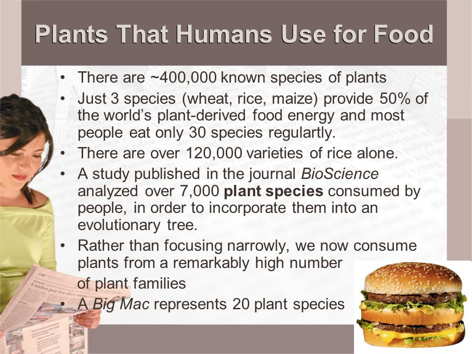 Plants That Humans Use for Food There are ~400,000 known species of plants Just 3 species (wheat, rice, maize) provide 50% of the world's plant-derive