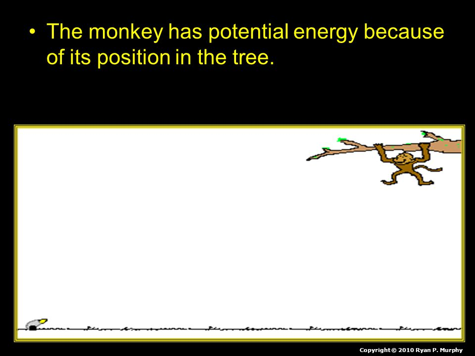 The monkey has potential energy because of its position in the tree. When she lets go her potential energy is transferred into the energy of motion (K