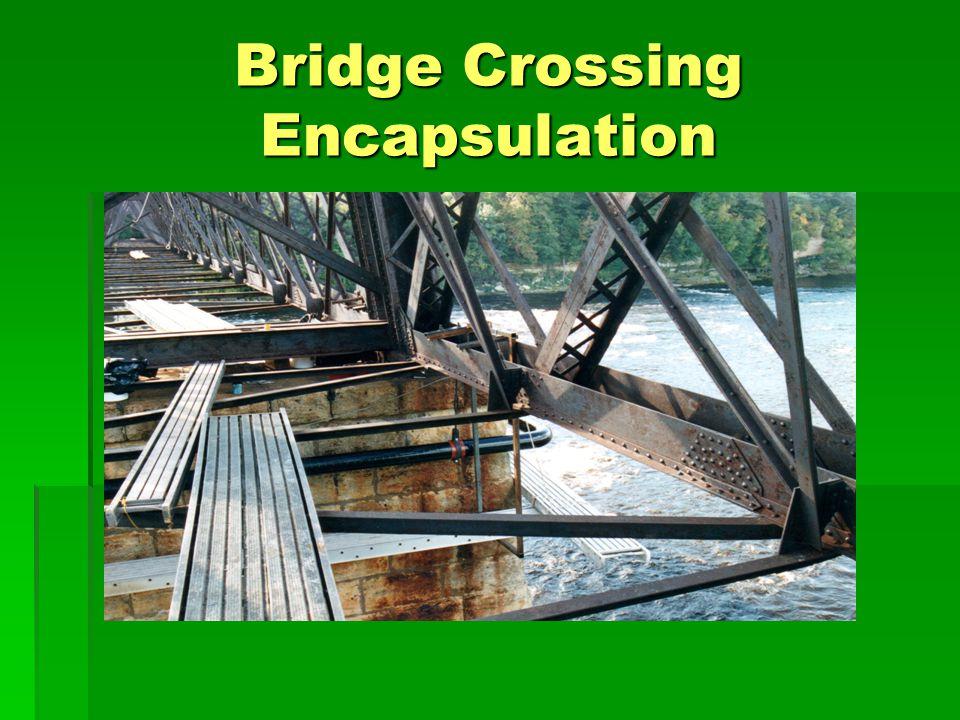 Bridge Crossing Encapsulation