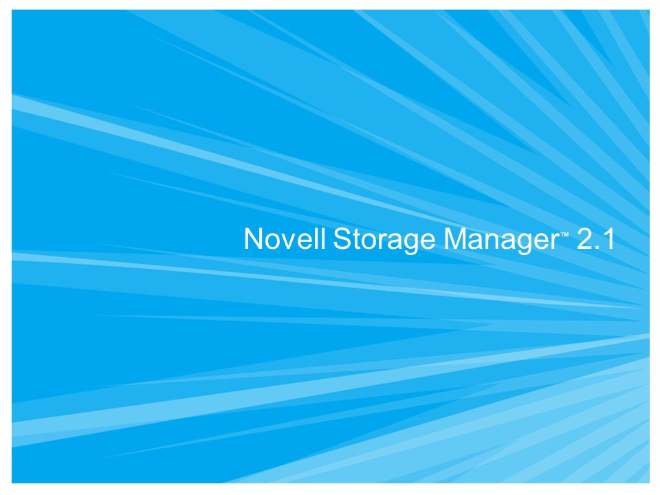 Novell Storage Manager ™ 2.1