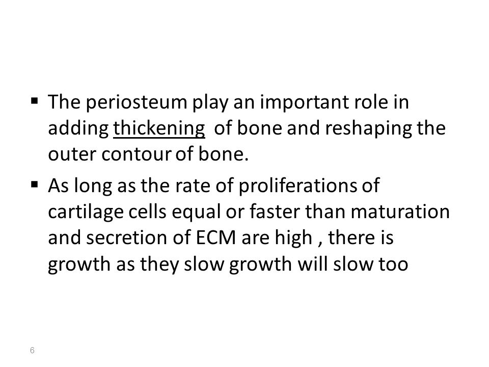 6  The periosteum play an important role in adding thickening of bone and reshaping the outer contour of bone.  As long as the rate of proliferation
