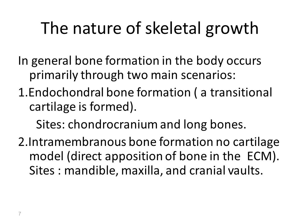 7 The nature of skeletal growth In general bone formation in the body occurs primarily through two main scenarios: 1.Endochondral bone formation ( a t