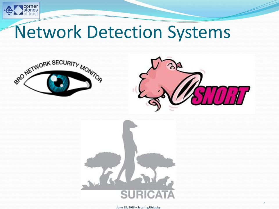 Network Detection Systems June 18, 2013 – Securing Ubiquity 7