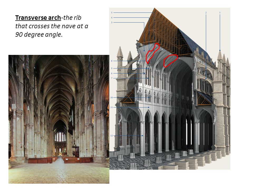 Transverse arch-the rib that crosses the nave at a 90 degree angle.
