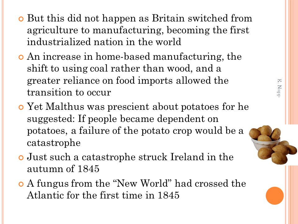 But this did not happen as Britain switched from agriculture to manufacturing, becoming the first industrialized nation in the world An increase in home-based manufacturing, the shift to using coal rather than wood, and a greater reliance on food imports allowed the transition to occur Yet Malthus was prescient about potatoes for he suggested: If people became dependent on potatoes, a failure of the potato crop would be a catastrophe Just such a catastrophe struck Ireland in the autumn of 1845 A fungus from the New World had crossed the Atlantic for the first time in 1845 E.