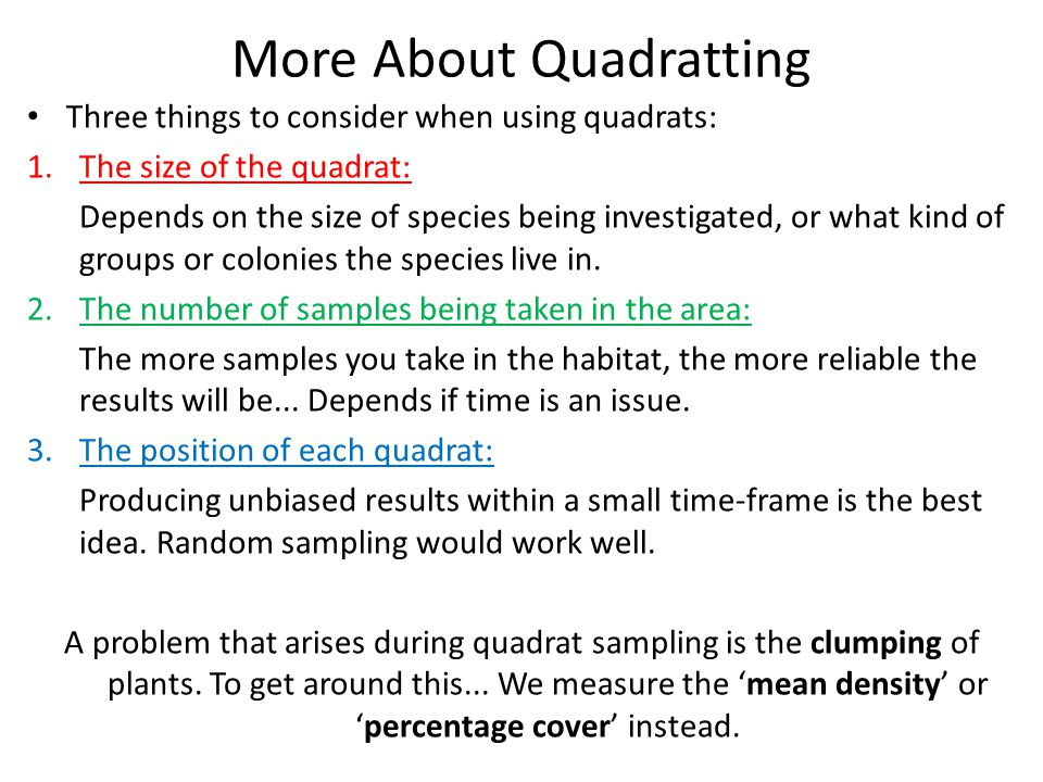 More About Quadratting Three things to consider when using quadrats: 1.The size of the quadrat: Depends on the size of species being investigated, or what kind of groups or colonies the species live in.