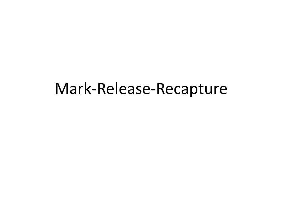 Mark-Release-Recapture