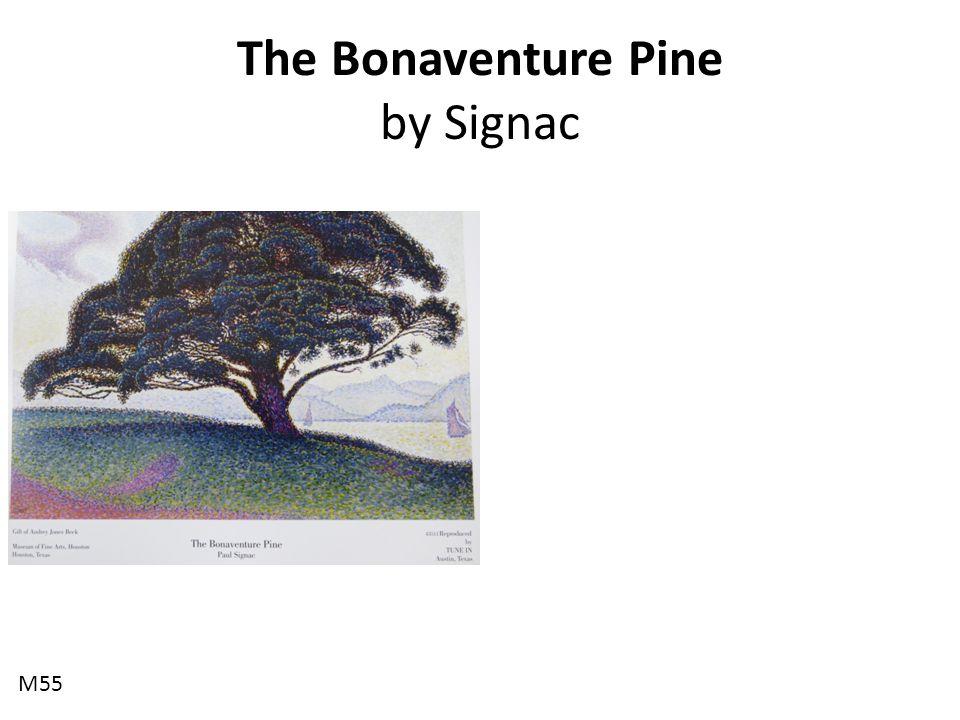 The Bonaventure Pine by Signac M55