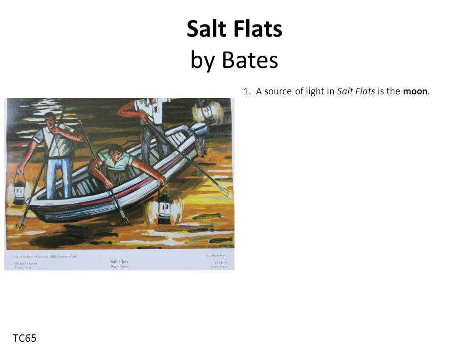 Salt Flats by Bates 1. A source of light in Salt Flats is the moon. TC65
