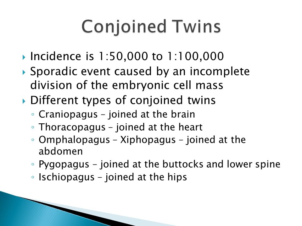  Incidence is 1:50,000 to 1:100,000  Sporadic event caused by an incomplete division of the embryonic cell mass  Different types of conjoined twins ◦ Craniopagus – joined at the brain ◦ Thoracopagus – joined at the heart ◦ Omphalopagus – Xiphopagus – joined at the abdomen ◦ Pygopagus – joined at the buttocks and lower spine ◦ Ischiopagus – joined at the hips