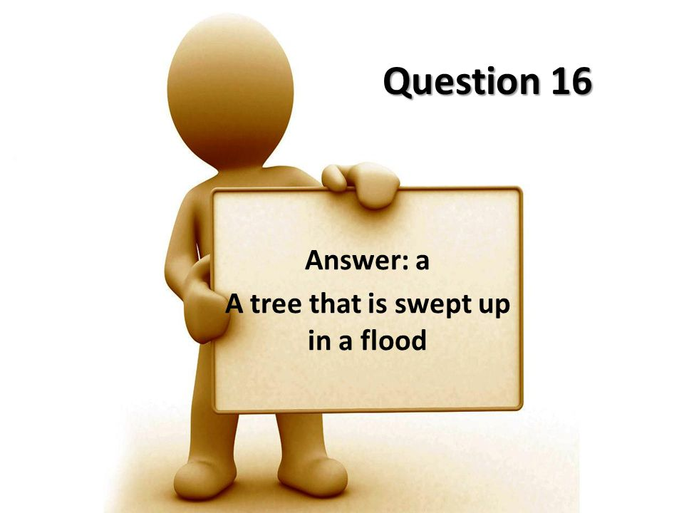 Question 16 Answer: a A tree that is swept up in a flood