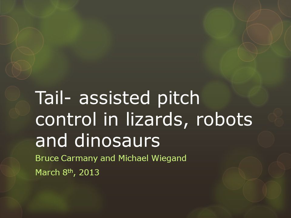 Tail- assisted pitch control in lizards, robots and dinosaurs Bruce Carmany and Michael Wiegand March 8 th, 2013