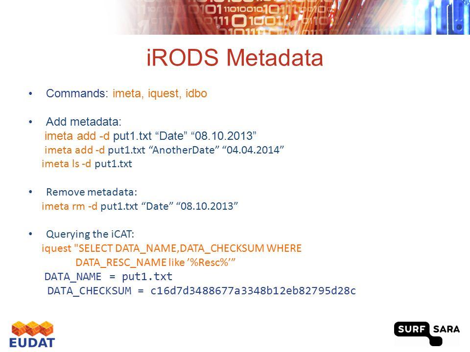 "iRODS Metadata Commands: imeta, iquest, idbo Add metadata: imeta add -d put1.txt ""Date"" ""08.10.2013"" imeta add -d put1.txt ""AnotherDate"" ""04.04.2014"""