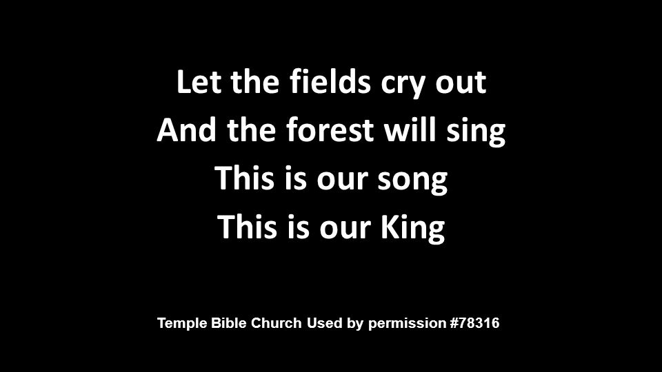 Let the fields cry out And the forest will sing This is our song This is our King Let the fields cry out And the forest will sing This is our song This is our King Temple Bible Church Used by permission #78316