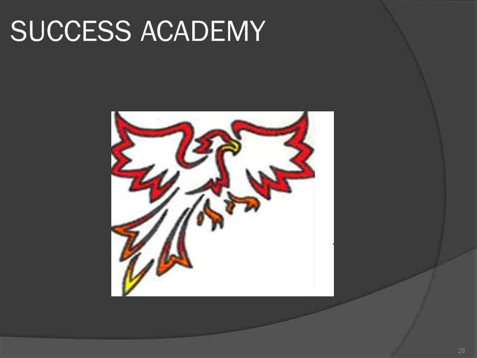 SUCCESS ACADEMY 28