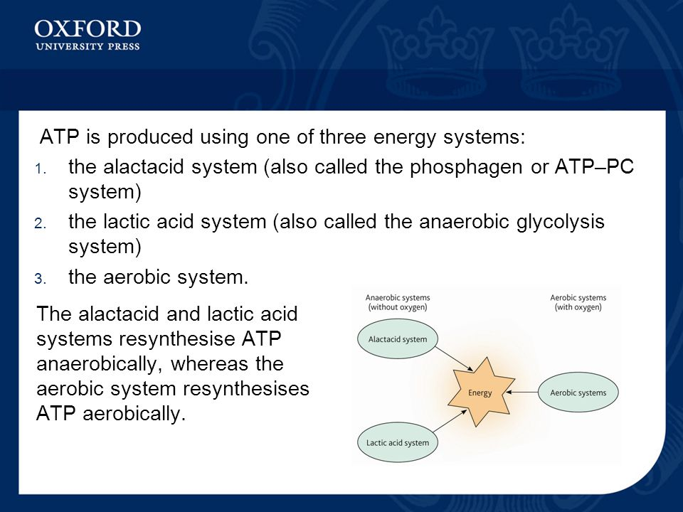 ATP is produced using one of three energy systems: 1.