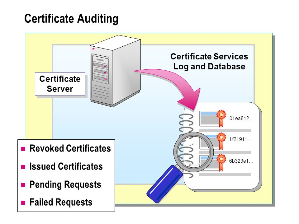 Certificate Auditing Certificate Server Certificate Services Log and Database 01ea812… 1f21911… 6b323e1… Revoked Certificates Issued Certificates Pending Requests Failed Requests