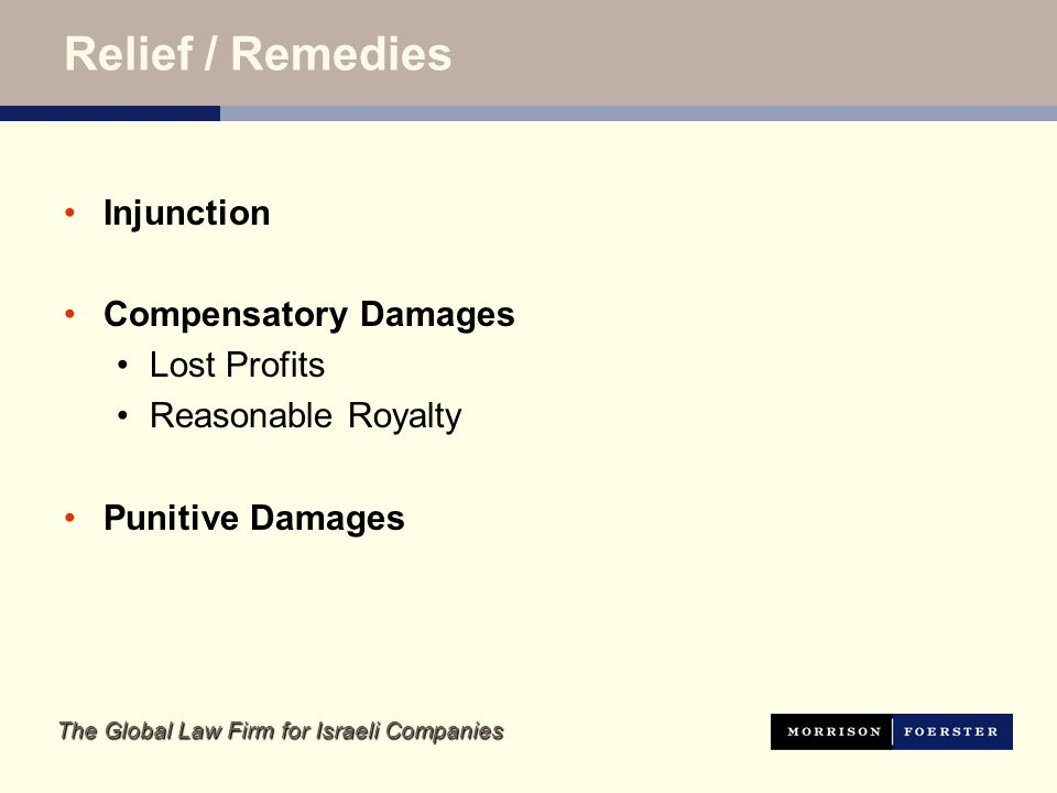 The Global Law Firm for Israeli Companies Relief / Remedies Injunction Compensatory Damages Lost Profits Reasonable Royalty Punitive Damages