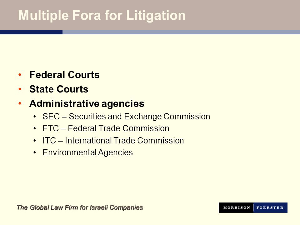 The Global Law Firm for Israeli Companies Multiple Fora for Litigation Federal Courts State Courts Administrative agencies SEC – Securities and Exchange Commission FTC – Federal Trade Commission ITC – International Trade Commission Environmental Agencies