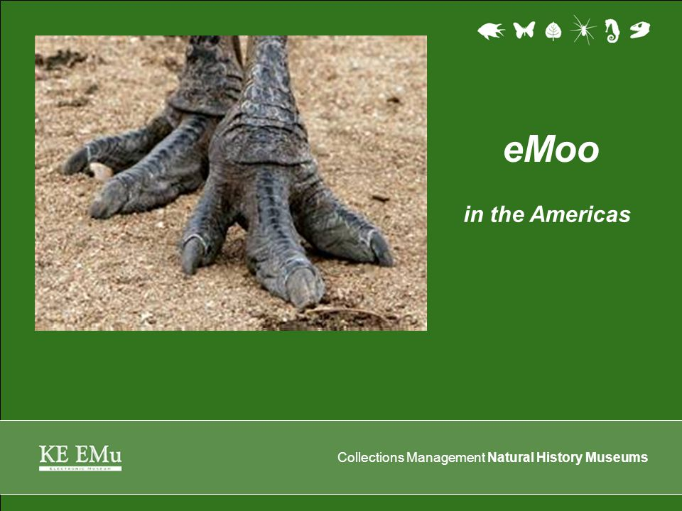 Collections Management Natural History Museums EMu… by any other name… …would be easier to pronounce.