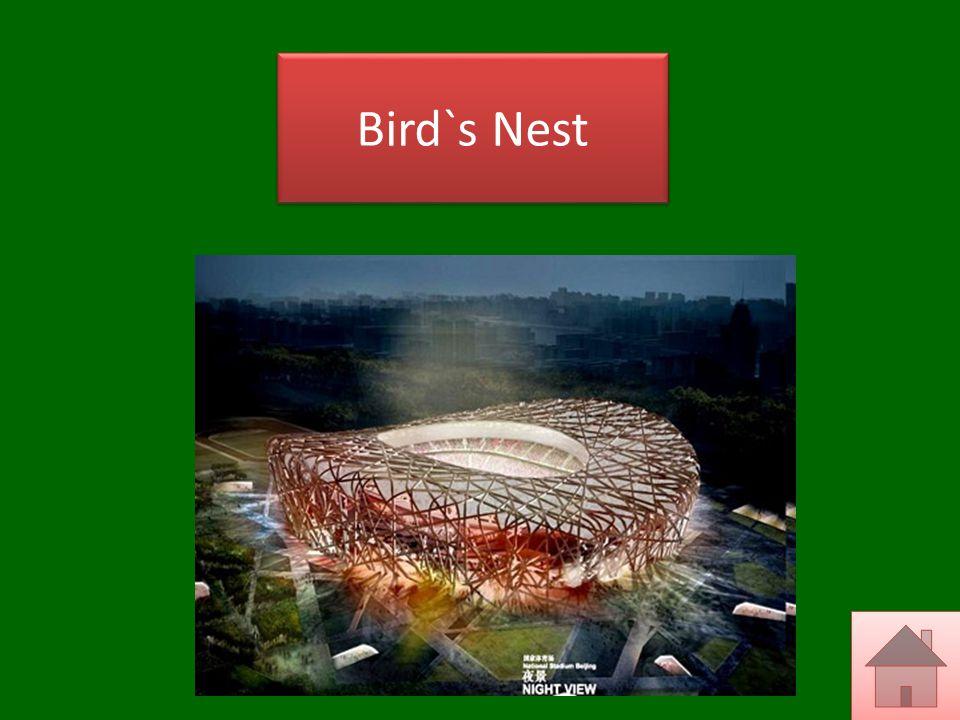 Bird`s Nest