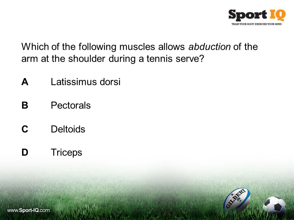 Which of the following muscles allows abduction of the arm at the shoulder during a tennis serve.
