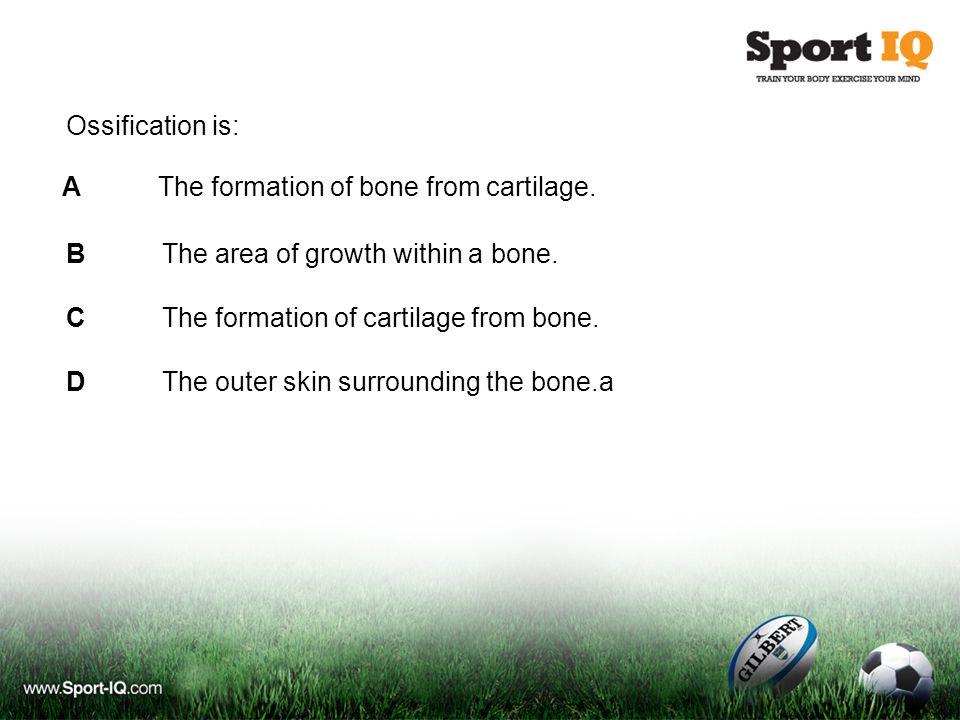 Ossification is: BThe area of growth within a bone.