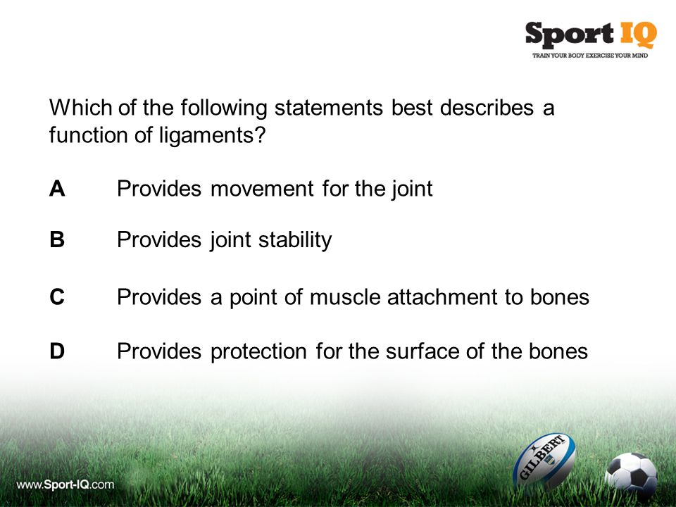 Which of the following statements best describes a function of ligaments? AProvides movement for the joint CProvides a point of muscle attachment to b