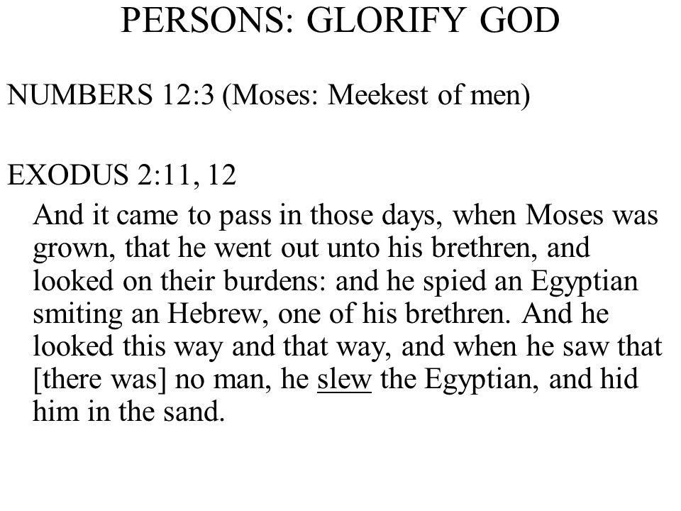PERSONS: GLORIFY GOD NUMBERS 12:3 (Moses: Meekest of men) EXODUS 2:11, 12 And it came to pass in those days, when Moses was grown, that he went out unto his brethren, and looked on their burdens: and he spied an Egyptian smiting an Hebrew, one of his brethren.