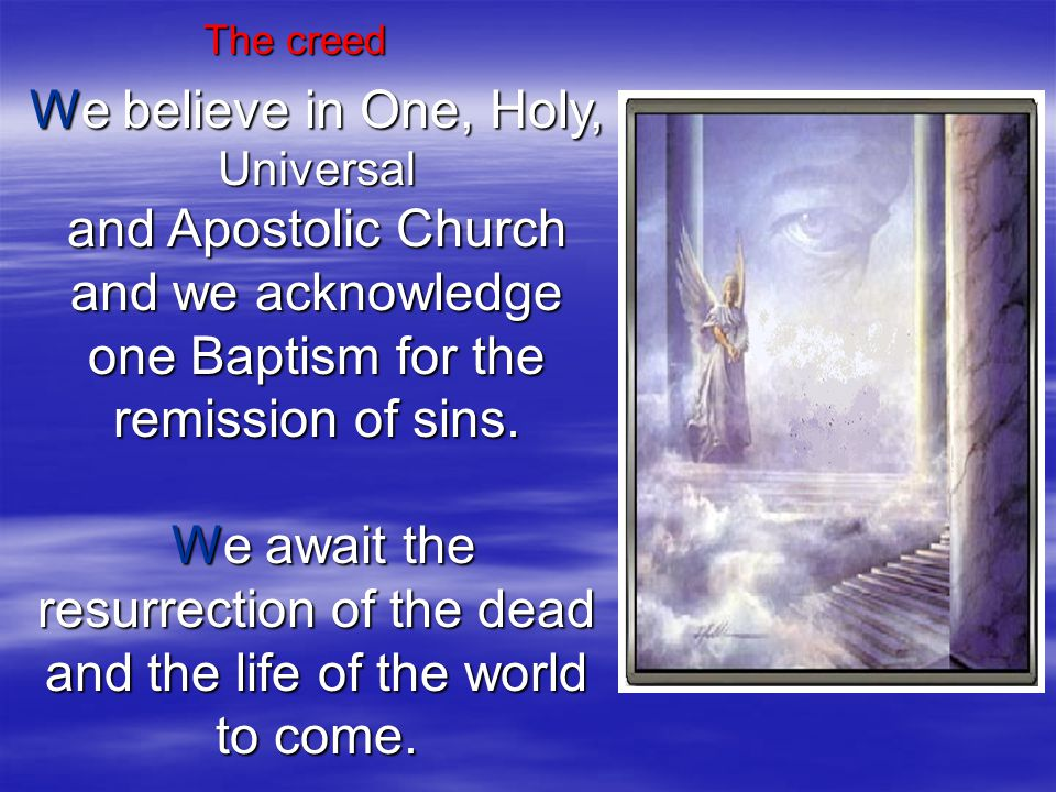 The creed We believe in One, Holy, Universal and Apostolic Church and we acknowledge one Baptism for the remission of sins.