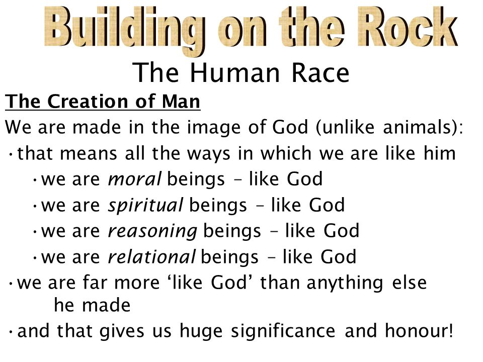 The Human Race The Creation of Man We are made in the image of God (unlike animals): that means all the ways in which we are like him we are moral beings – like God we are spiritual beings – like God we are reasoning beings – like God we are relational beings – like God we are far more 'like God' than anything else he made and that gives us huge significance and honour!