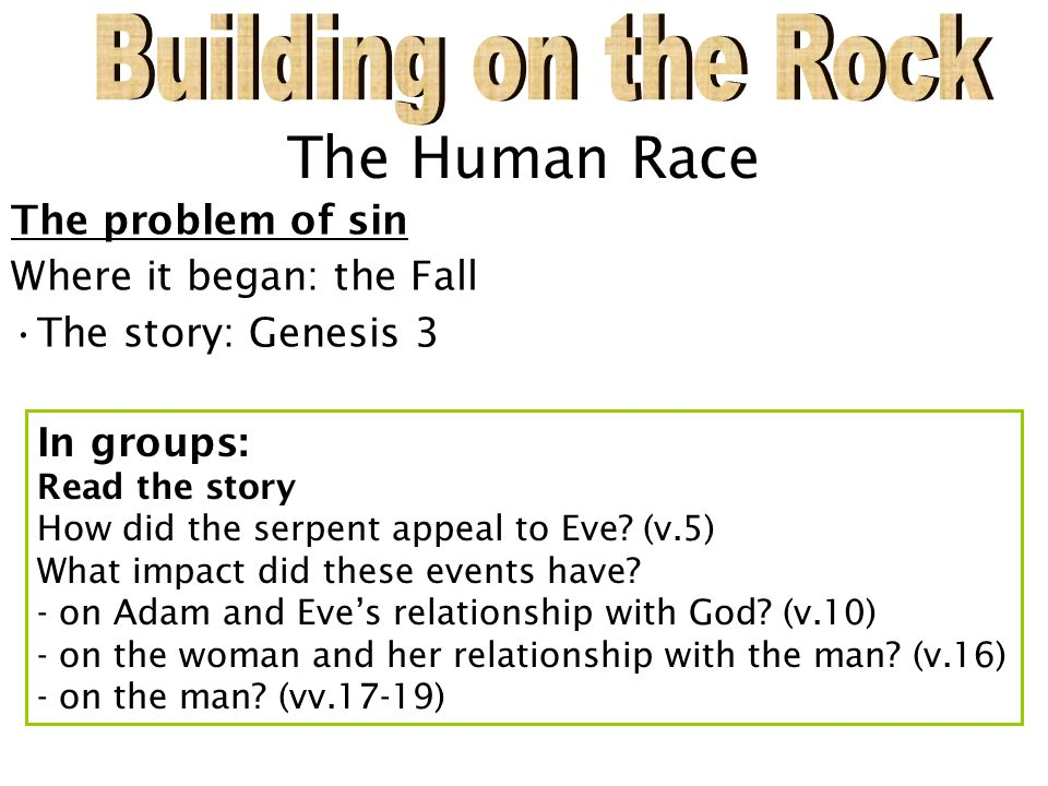 The Human Race The problem of sin Where it began: the Fall The story: Genesis 3 In groups: Read the story How did the serpent appeal to Eve.